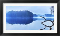 Framed Reflections