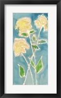 Framed Spring Annuals I