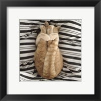 Framed Cat Yoga IX