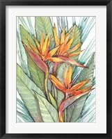Framed Tropical Botanical Paradise II