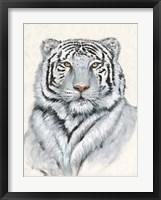 Framed White Tiger I