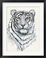 Framed White Tiger II