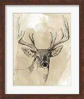 Framed Burnished Buck I