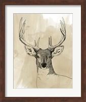 Framed Burnished Buck II