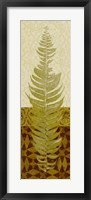 Framed Tropical Frond II