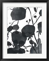Framed Monoflora I