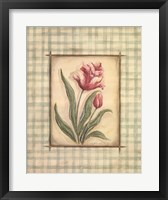 Framed Gingham Tulip
