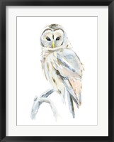 Framed Arctic Owl II