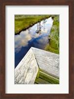 Framed Ward Ware Nature Park, Gulf Shores Alabama