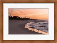 Framed Alabama, Gulf Shores, Beach, shore birds