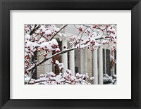 Framed Twickenham in Christmas, Huntsville, Alabama