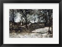 Framed Landscape  Fontainebleau
