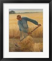 Framed Harvest, 1885