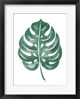 Framed Botanic Inspiration IV No Words