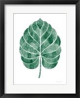 Framed Botanic Inspiration III No Words