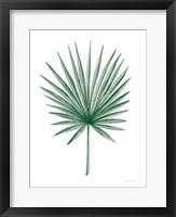Framed Botanic Inspiration II No Words