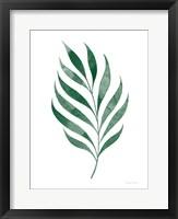 Framed Botanic Inspiration I No Words