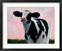 Framed Looking At You - Cow