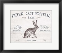 Framed Peter Cottontail