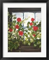 Framed Window Box IV