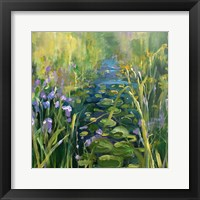 Framed Lily Pads