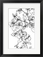 Framed Leafy BW