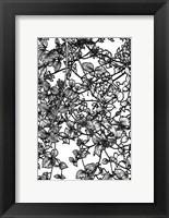 Framed Leafy BW III