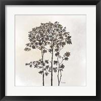 Framed Leafy Treetop