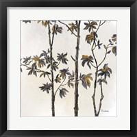 Framed Leafy Treetop III