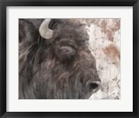 Framed Yellowstone Buffalo