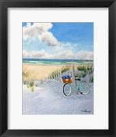 Framed Beach and Bike