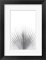 Framed Palm VI