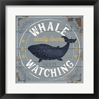 Framed Whale Watching
