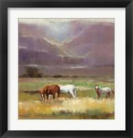 Framed Field of Horses