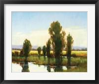 Framed Tree Marsh