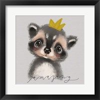 Framed Amazing Raccoon