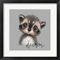 Framed Dream Raccoon