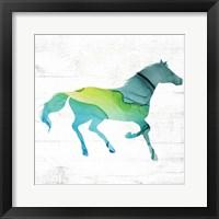 Horse IV Framed Print
