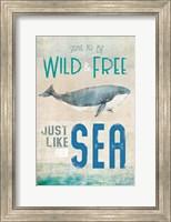 Framed Wild & Free