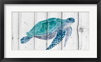 Framed Turtle II