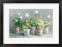 Framed Farmhouse Geraniums Crop