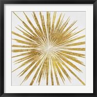 Framed Starshine