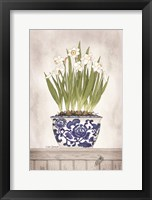 Framed Blue and White Daffodils II