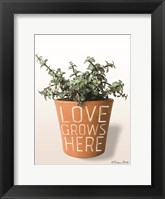 Framed Succulent Love Grows Here