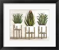 Framed White Pots on Stands I