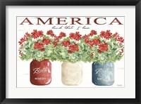 Framed America Glass Jars