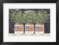 Framed Patriotic Glass Jar Trio II