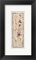 Framed Dried Flowers I