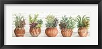 Framed Terracotta Pots I