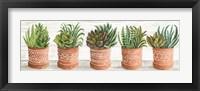 Framed Terracotta Pots II